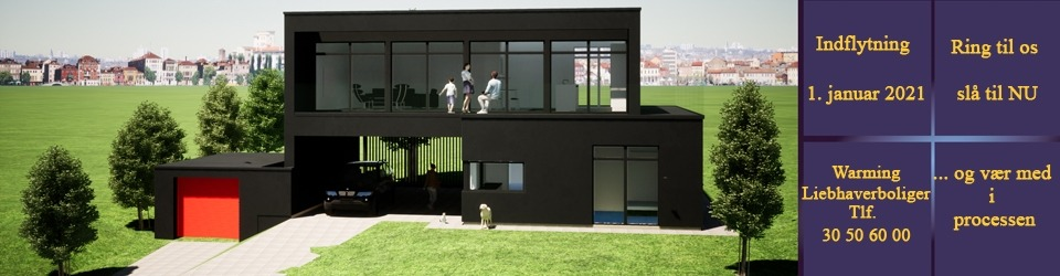 Nybygget luksushus pr. 1. marts 2021 - Bredballe Vejle
